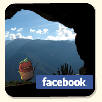 An image for supporting How to Conjugate Spanish Verbs with facebook